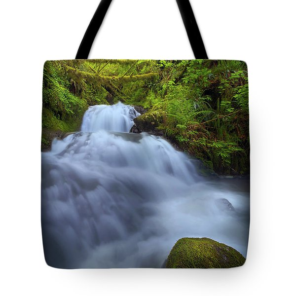 Waterfall At Shepperds Dell Falls Tote Bag by David Gn