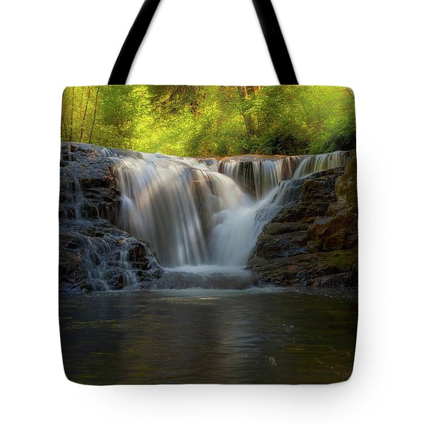 Waterfall At Sweet Creek Hiking Trail Complex Tote Bag by David Gn