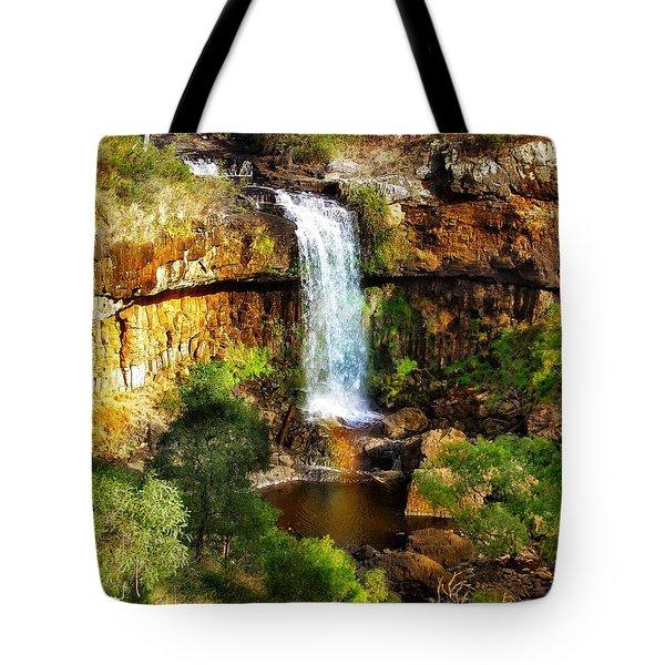 Waterfall Beauty Tote Bag by Blair Stuart