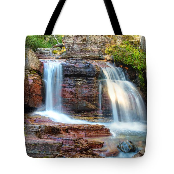 Waterfall Tote Bag by Gary Lengyel