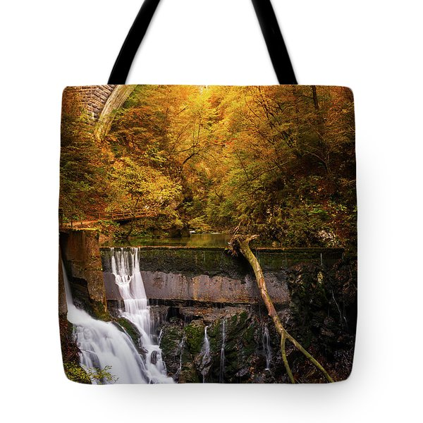 Tote Bag featuring the photograph Waterfall In An Autumn Canyon by IPics Photography