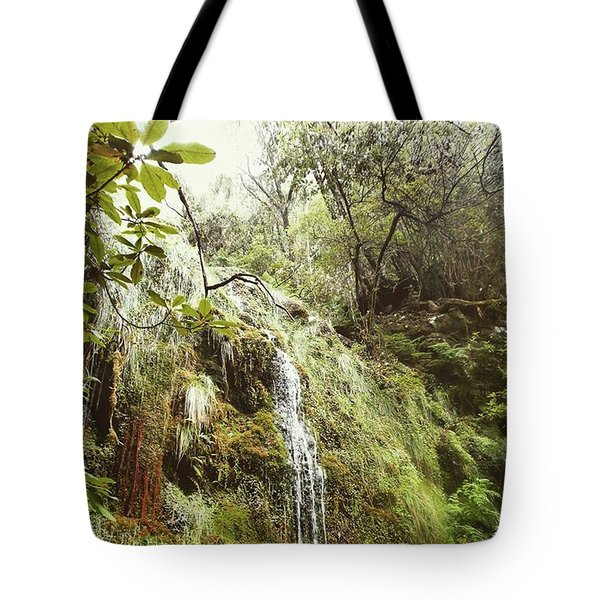 Waterfall In The Laurel Forest Tote Bag