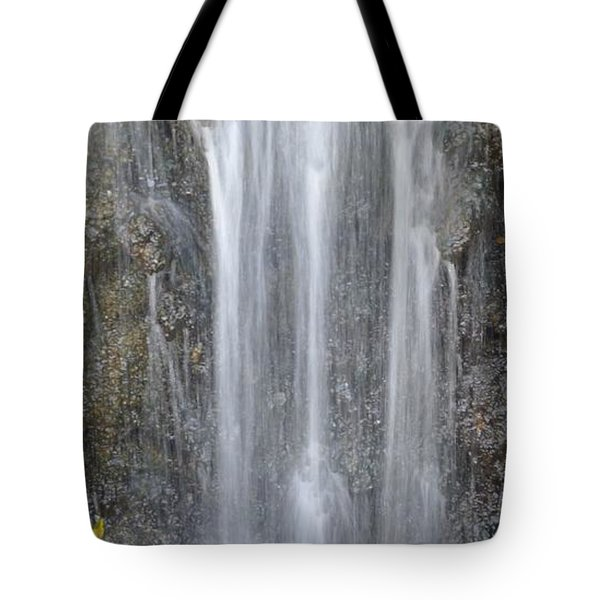 Waterfall  Tote Bag by Nora Boghossian