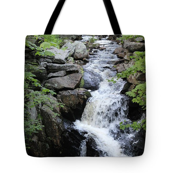 Waterfall Pillsbury State Park Tote Bag