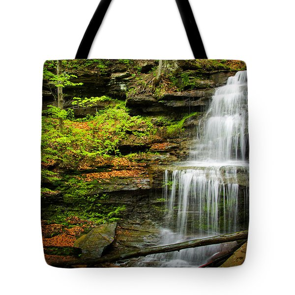 Waterfalls On Little Three Mile Run Tote Bag