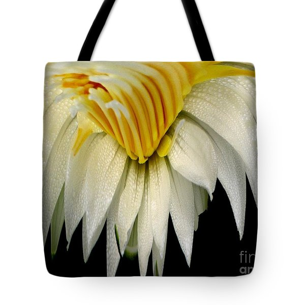 Waterlily Flower Abstract Tote Bag by Rose Santuci-Sofranko