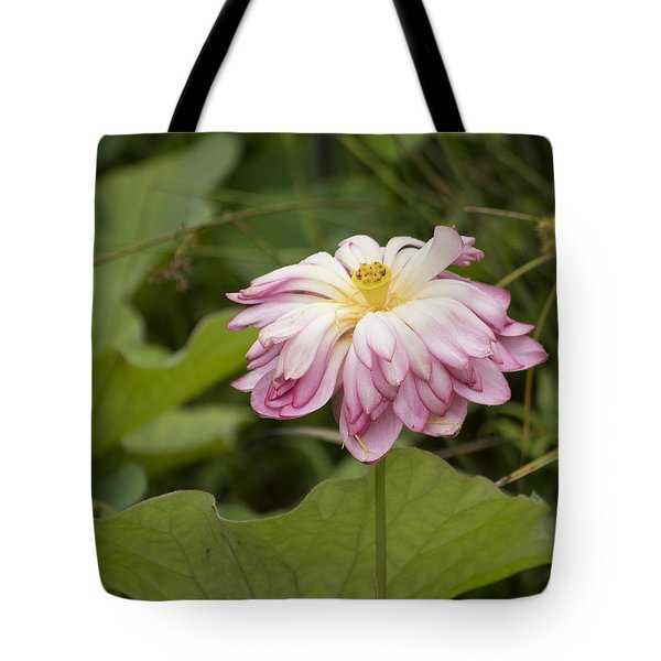 Waterlily Phasing Out Tote Bag by Linda Geiger