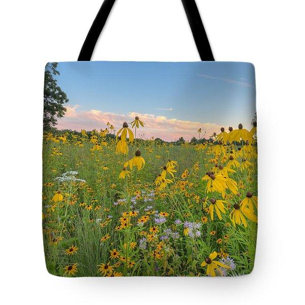 Prairie 1 Tote Bag