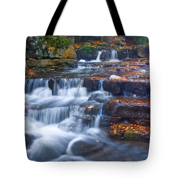 Watery Steps Tote Bag
