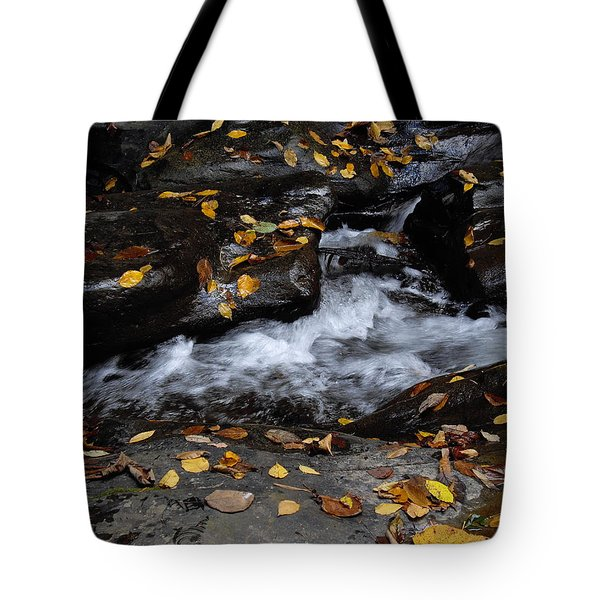 Tote Bag featuring the photograph Watkins Glen 1 by Vilas Malankar