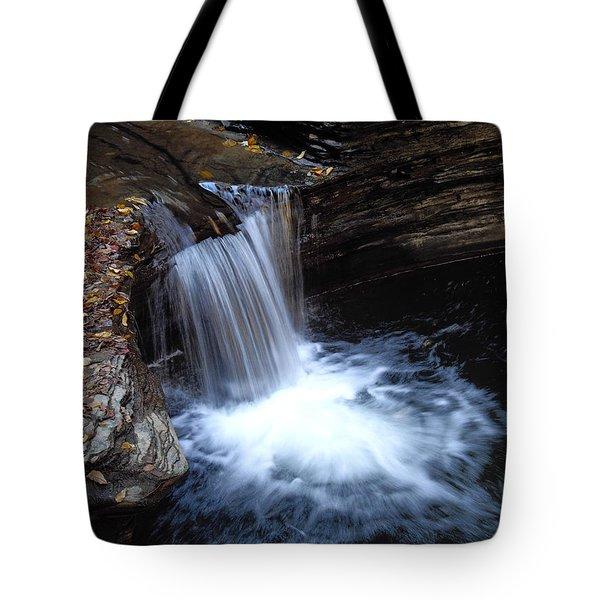 Tote Bag featuring the photograph Watkins Glen 2 by Vilas Malankar