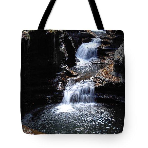 Tote Bag featuring the photograph Watkins Glen 3 by Vilas Malankar