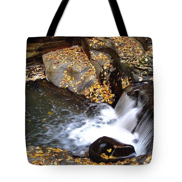 Tote Bag featuring the photograph Watkins Glen Ny 2 by Vilas Malankar