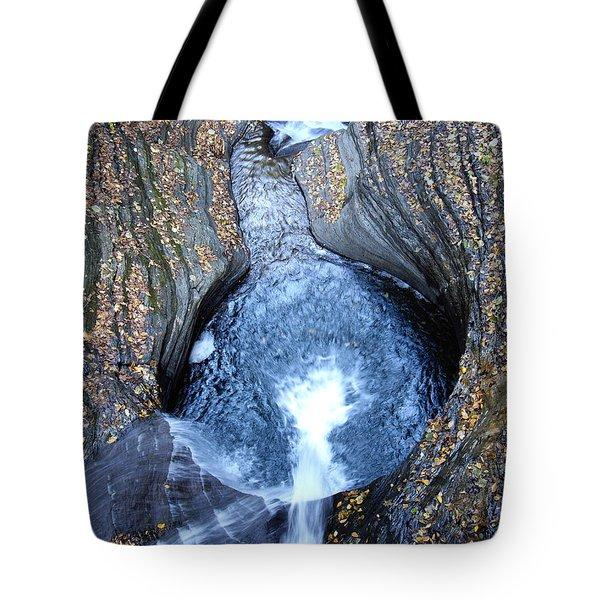 Tote Bag featuring the photograph Watkins Glen Ny by Vilas Malankar