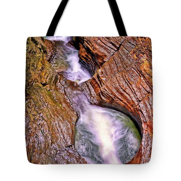 Watkins Glen - Rainbow Falls 005 Tote Bag by George Bostian