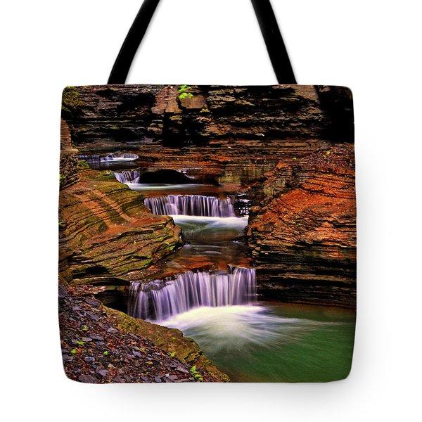 Watkins Glen State Park 014 Tote Bag