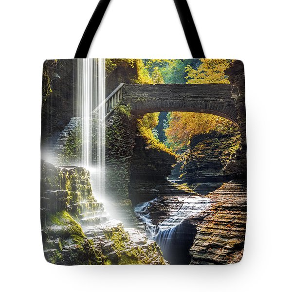 Tote Bag featuring the photograph Watkins Glen State Park by Mihai Andritoiu