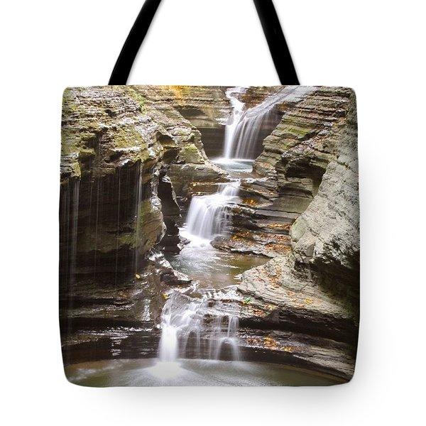 Watkins Glen Steps Tote Bag