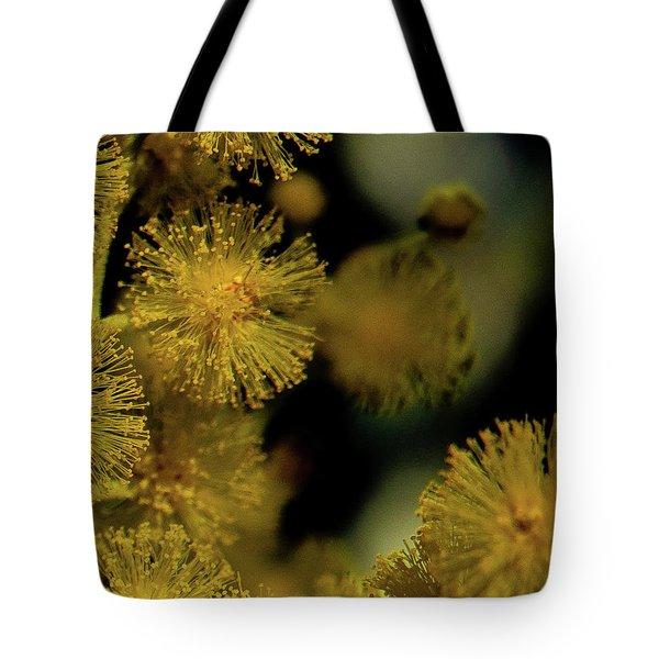 Tote Bag featuring the photograph Wattle Flowers by Jeremy Holton