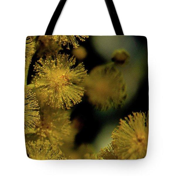 Wattle Flowers Tote Bag