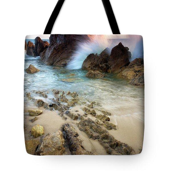 Wave Breaker  Tote Bag