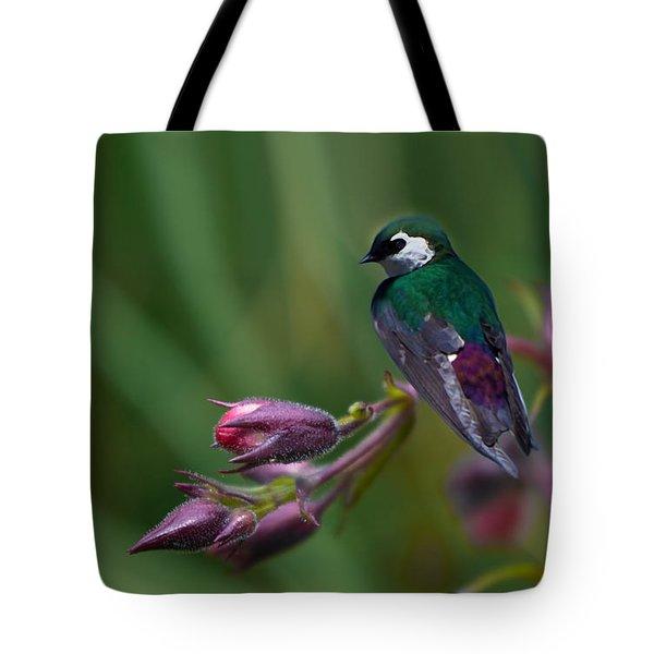 Wavey Perch Tote Bag