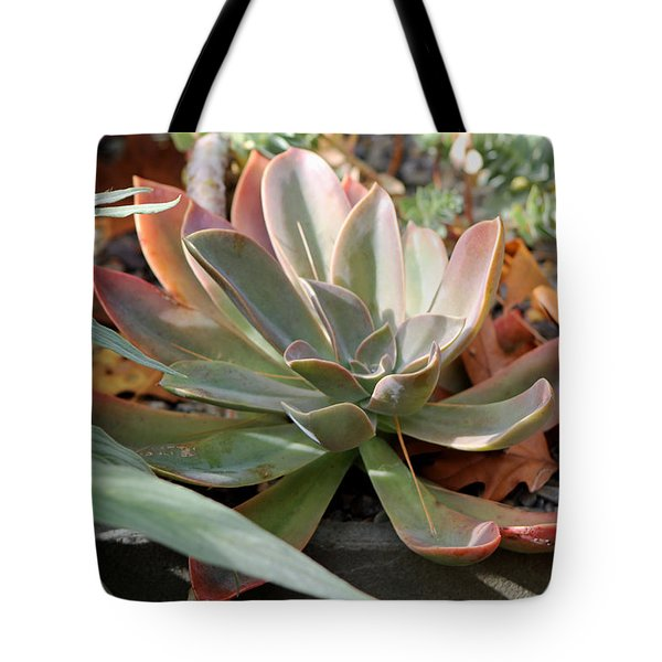 Tote Bag featuring the photograph Wax Rose by Deborah  Crew-Johnson
