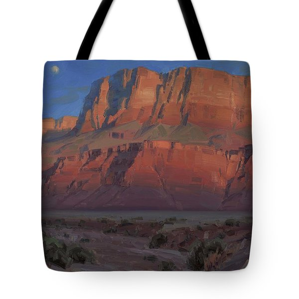Waxing Moon Tote Bag