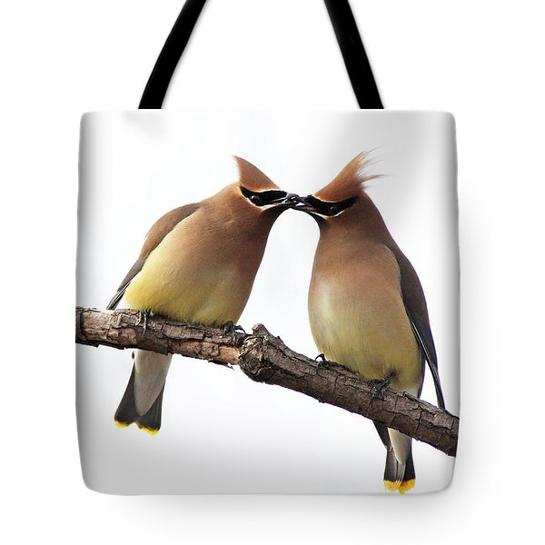 Waxwings In Love Tote Bag by Mircea Costina Photography