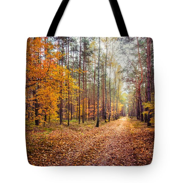 Way Of Light Tote Bag by Dmytro Korol