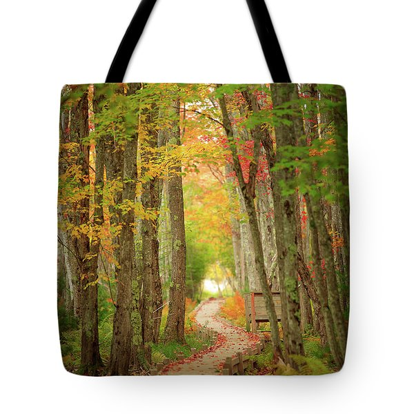 Tote Bag featuring the photograph Way To Sieur De Monts  by Emmanuel Panagiotakis