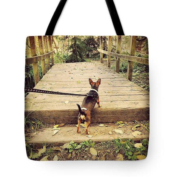 We All Have Our Paths Tote Bag