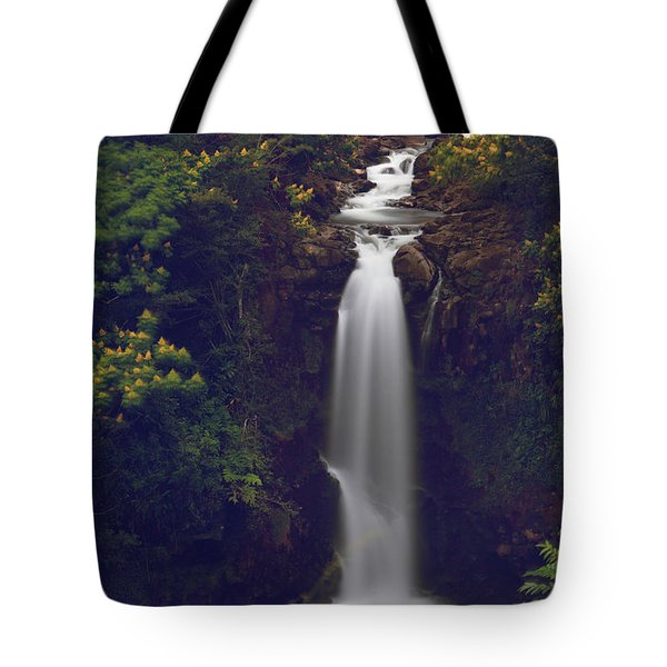 We Almost Had It All Tote Bag