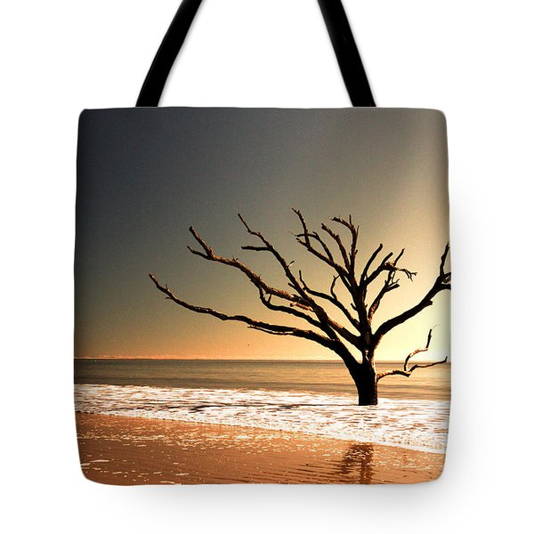 Tote Bag featuring the photograph We Can Be Heroes by Dana DiPasquale