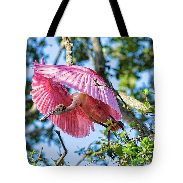 We Have Lift Off Tote Bag