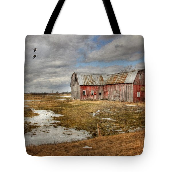We Lived The Life Tote Bag by Lori Deiter