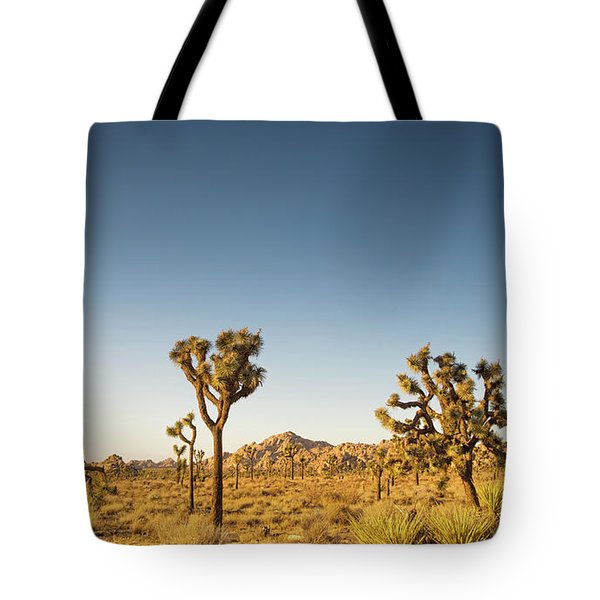 We Love This Sunset Tote Bag