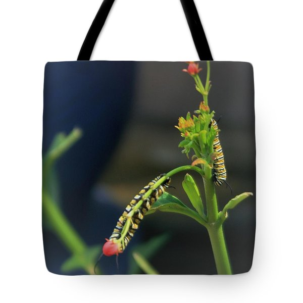 We Need To Get Together And Have Lunch Tote Bag by John Glass