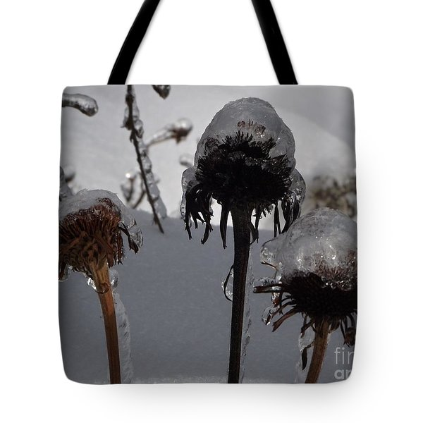 We Three Pods Tote Bag