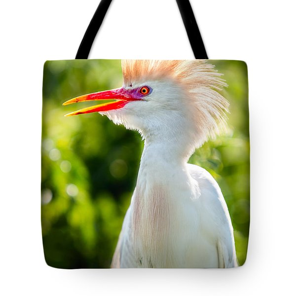 Wearing His Colors Tote Bag by Christopher Holmes