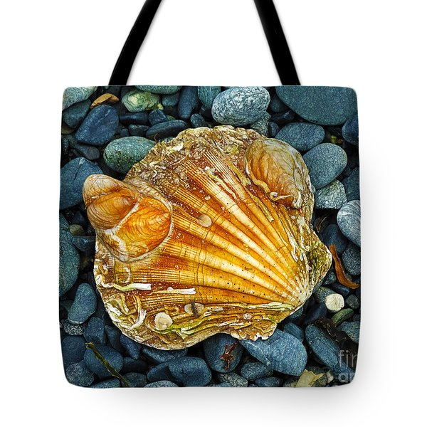 Weathered Scallop Shell Tote Bag