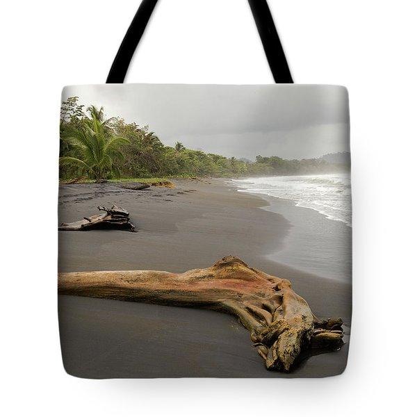 Weathered Tree On Costa Rica Beach Tote Bag