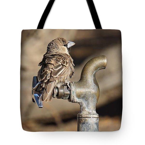 Weaver Bird Tote Bag