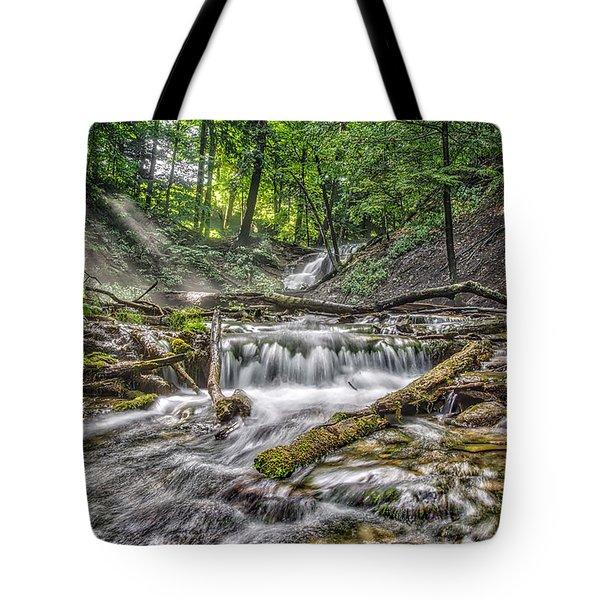 Weaver's Creek Falls Tote Bag by Irwin Seidman