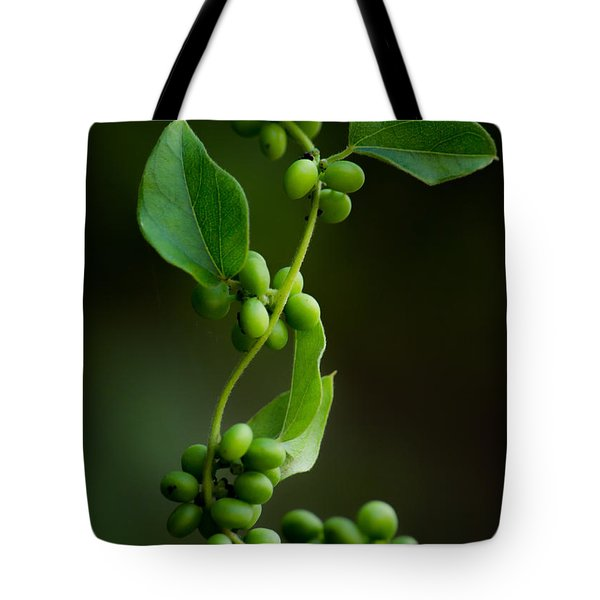 Weaving Vines Tote Bag by Shelby  Young