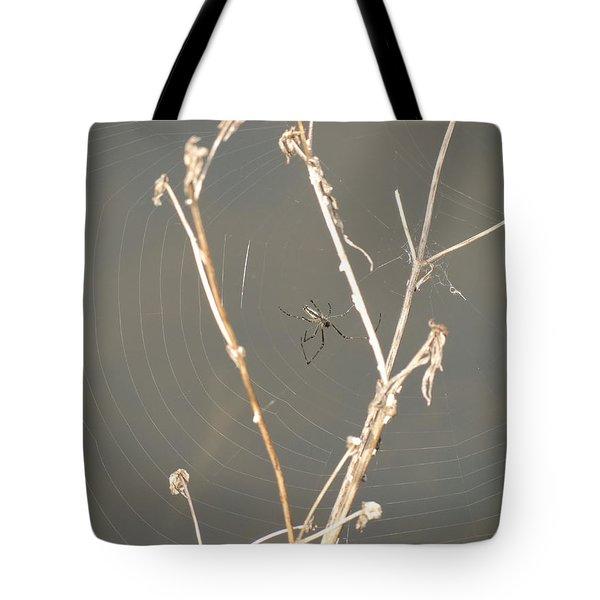 Web Of Wonder Tote Bag