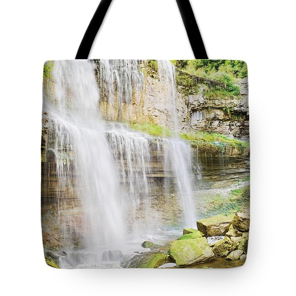 Webster Falls Tote Bag