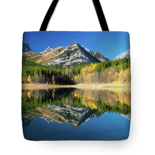 Wedge Pond Color Tote Bag