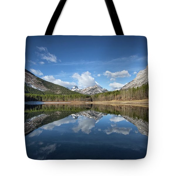 Wedge Pond Reflections Tote Bag