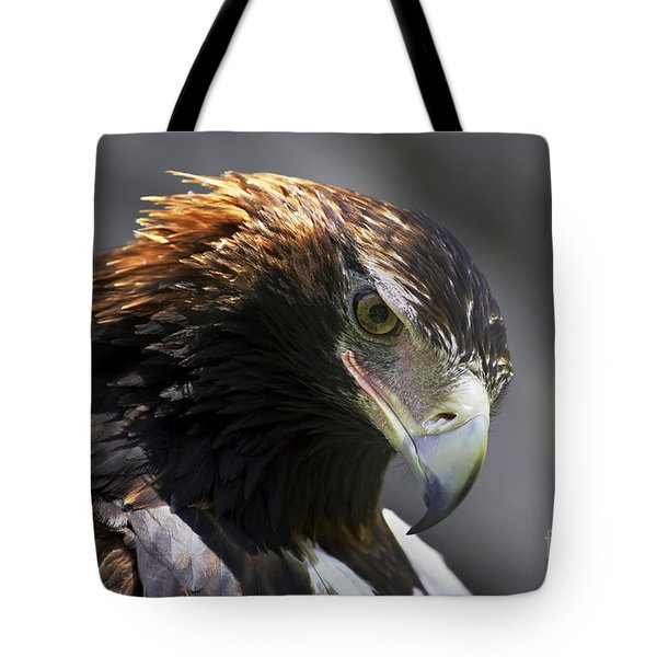 Wedge Tail Eagle Tote Bag by Bill  Robinson